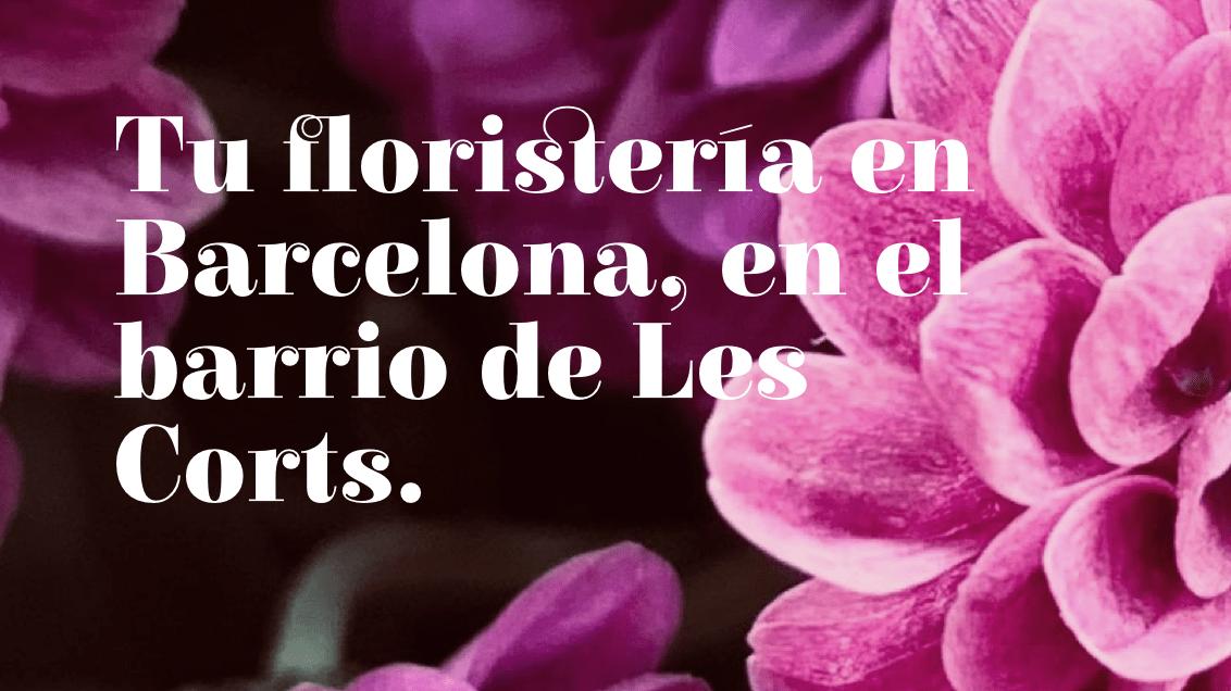 Gremi floristes Catalunya | Ideamatic